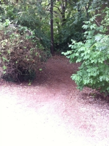 Dirt path to parking lot